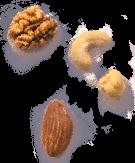 Bean Features